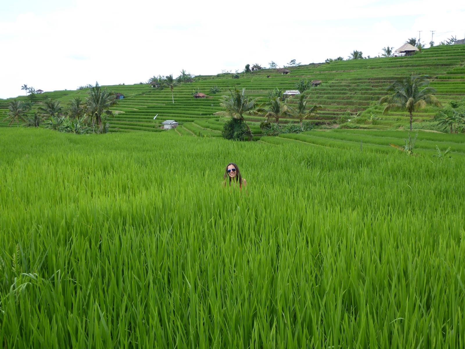 Sárga ruhás lány - Rizsföld, Bali